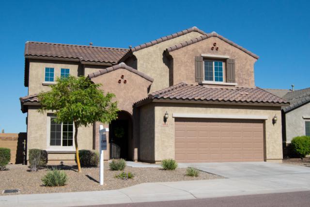 26916 N 17TH Avenue, Phoenix, AZ 85085 (MLS #5813524) :: The Laughton Team