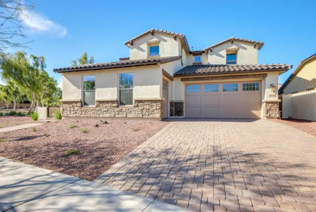 20668 W Park Meadows Drive, Buckeye, AZ 85396 (MLS #5814375) :: Realty Executives