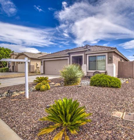 2783 E Cowboy Cove Trail, San Tan Valley, AZ 85143 (MLS #5814388) :: The Property Partners at eXp Realty