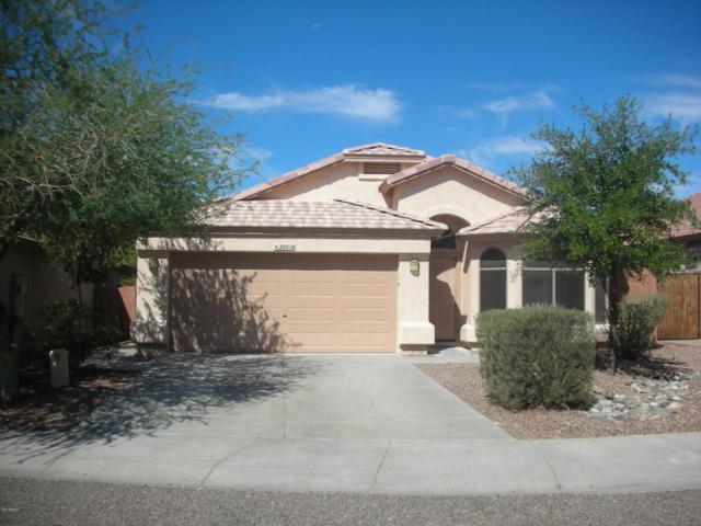 20016 N 39TH Lane, Glendale, AZ 85308 (MLS #5814923) :: Occasio Realty