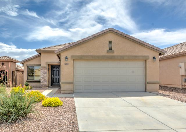 959 W Desert Canyon Drive, San Tan Valley, AZ 85143 (MLS #5816197) :: The Everest Team at My Home Group