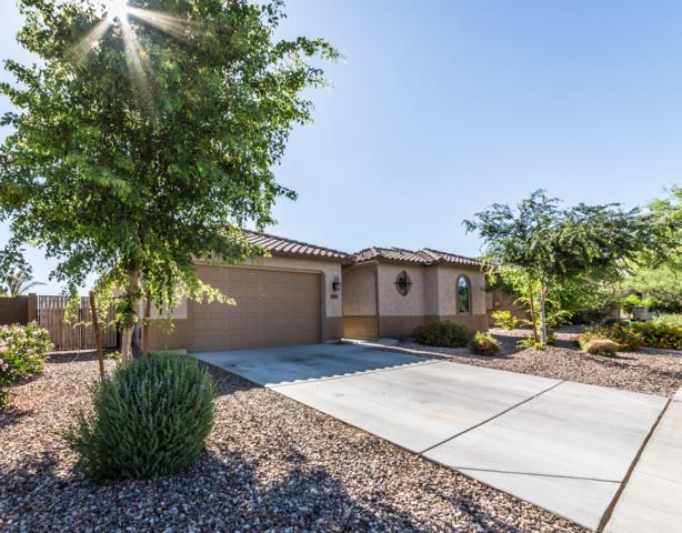 538 S 196TH Drive, Buckeye, AZ 85326 (MLS #5817352) :: Yost Realty Group at RE/MAX Casa Grande