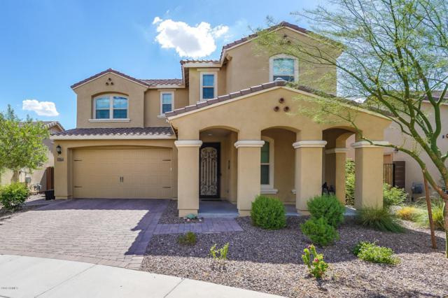 13253 W Copperleaf Lane, Peoria, AZ 85383 (MLS #5817509) :: Occasio Realty