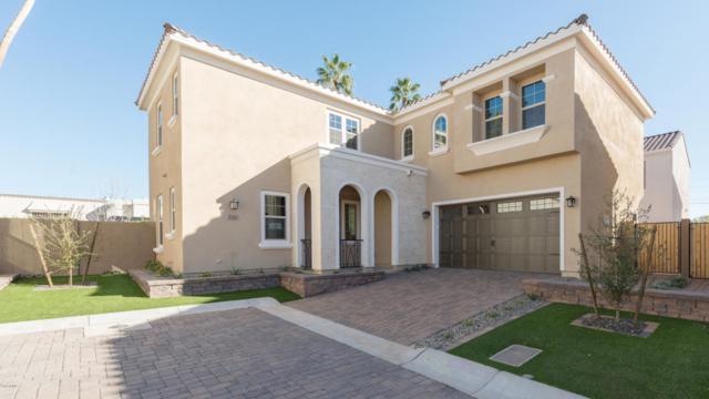 3321 N 25TH Place, Phoenix, AZ 85016 (MLS #5818477) :: Sibbach Team - Realty One Group