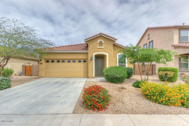 16954 W Mohave Street, Goodyear, AZ 85338 (MLS #5819003) :: Lifestyle Partners Team