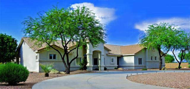 6615 W Parkside Lane, Glendale, AZ 85310 (MLS #5819811) :: Brett Tanner Home Selling Team