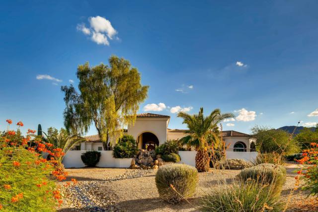 6419 E Malcomb Drive, Paradise Valley, AZ 85253 (MLS #5820469) :: The Kenny Klaus Team