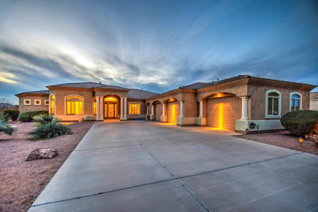 22504 S 196TH Circle, Queen Creek, AZ 85142 (MLS #5821016) :: The Garcia Group