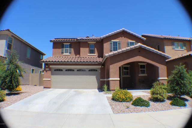 12132 W El Cortez Place, Peoria, AZ 85383 (MLS #5823259) :: The Results Group