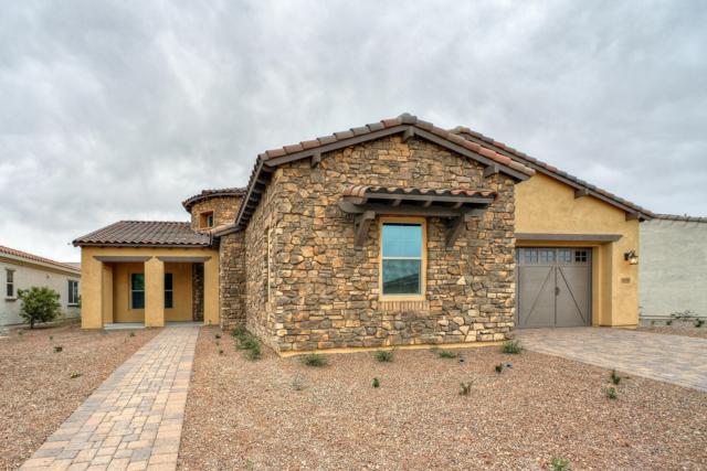 4694 N 206TH Avenue, Buckeye, AZ 85396 (MLS #5823496) :: The Garcia Group