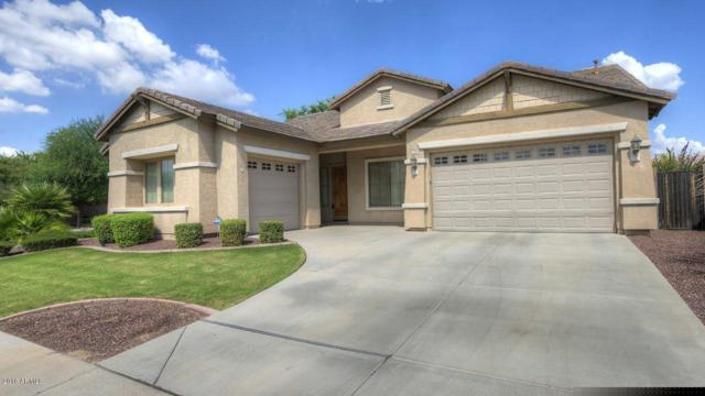 1796 E Glacier Place, Chandler, AZ 85249 (MLS #5824050) :: Conway Real Estate