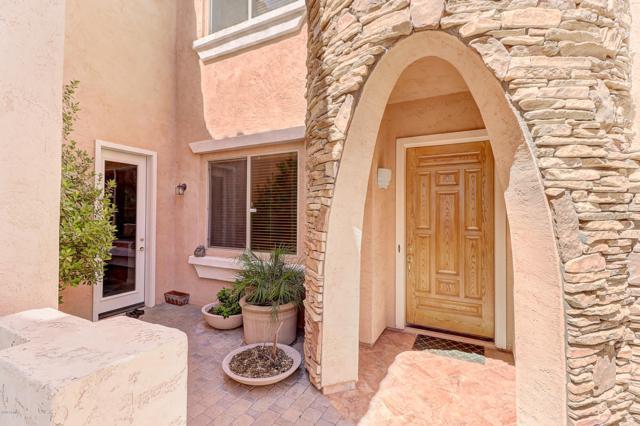 848 E Torrey Pines Place, Chandler, AZ 85249 (MLS #5824167) :: The Garcia Group
