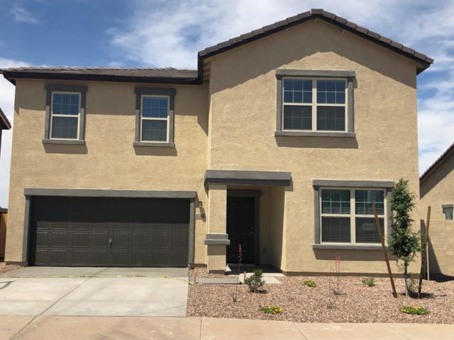 37266 W Cannataro Lane, Maricopa, AZ 85138 (MLS #5824843) :: Keller Williams Realty Phoenix