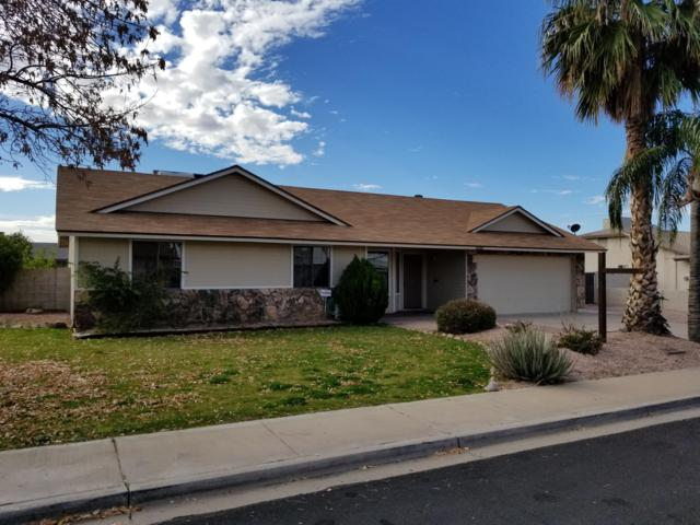 5501 E Carol Avenue, Mesa, AZ 85206 (MLS #5826355) :: The Laughton Team