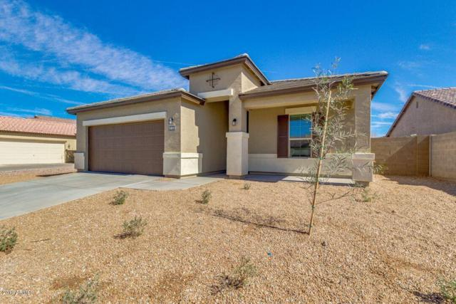 42207 W Lucera Lane, Maricopa, AZ 85138 (MLS #5827122) :: The Daniel Montez Real Estate Group