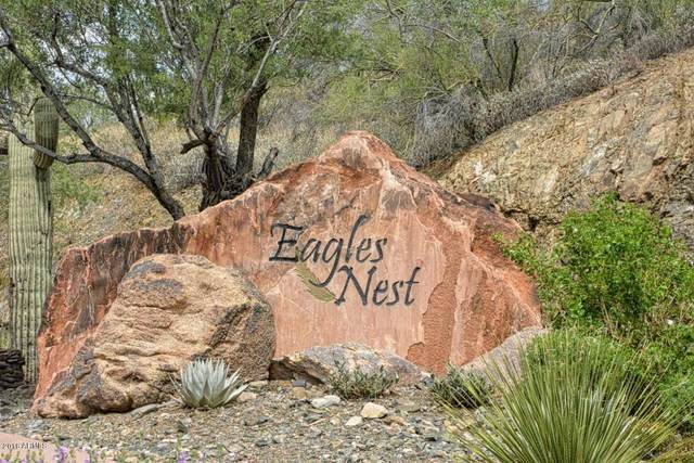14427 E Prairie Dog Trail, Fountain Hills, AZ 85268 (MLS #5827488) :: Arizona 1 Real Estate Team