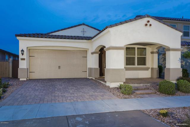 10634 E Corbin Avenue, Mesa, AZ 85212 (MLS #5828890) :: RE/MAX Excalibur