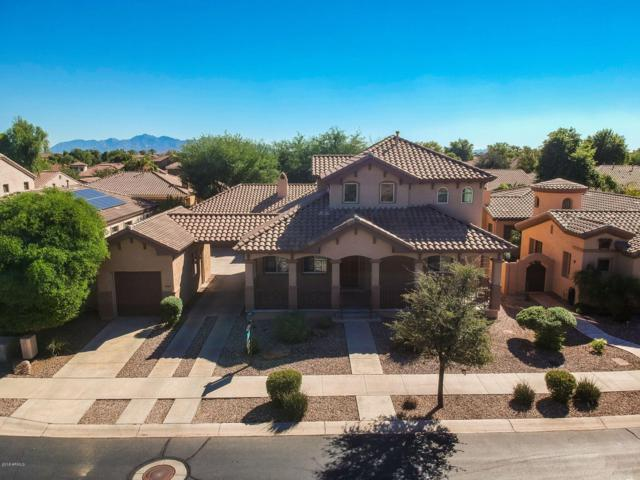 909 W Sycamore Lane, Litchfield Park, AZ 85340 (MLS #5830103) :: The Results Group