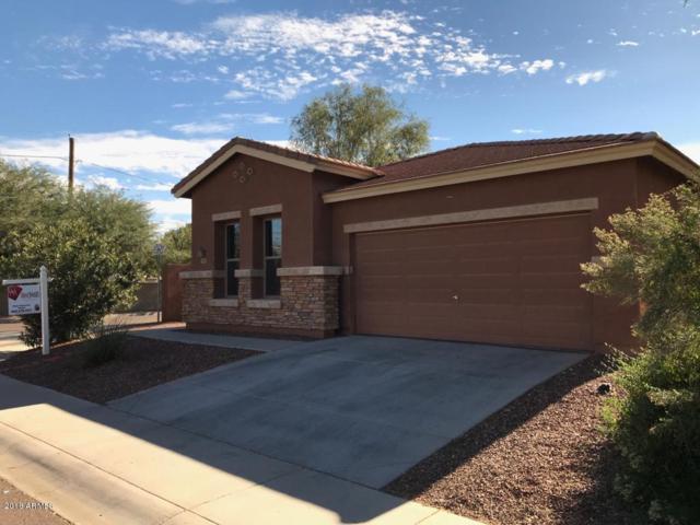 3307 W Paseo Way, Laveen, AZ 85339 (MLS #5832491) :: Team Wilson Real Estate