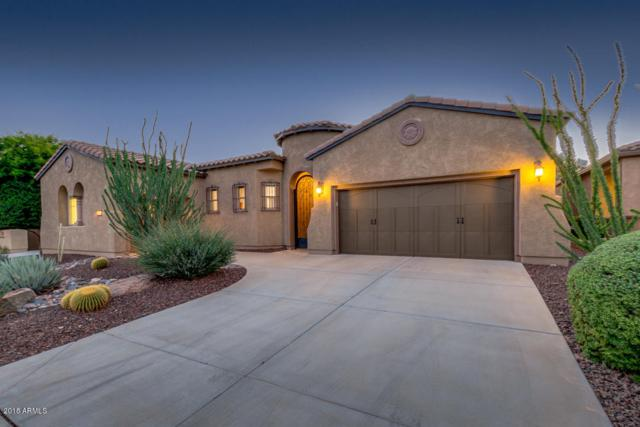 27676 N 130TH Glen, Peoria, AZ 85383 (MLS #5835723) :: Lux Home Group at  Keller Williams Realty Phoenix