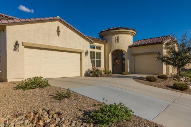 17015 S 175TH Avenue, Goodyear, AZ 85338 (MLS #5836091) :: Kortright Group - West USA Realty