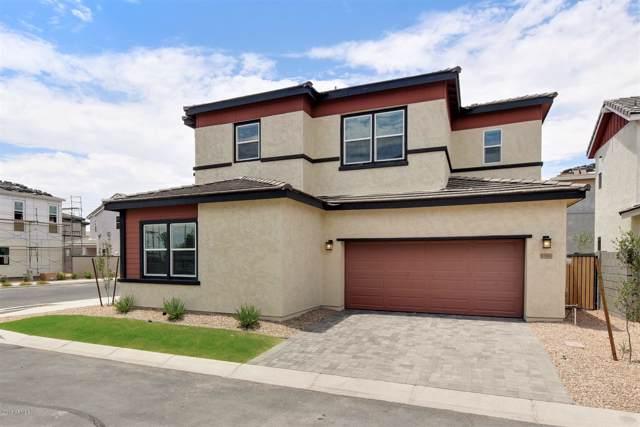 15702 W Melvin Street, Goodyear, AZ 85338 (MLS #5839366) :: Brett Tanner Home Selling Team