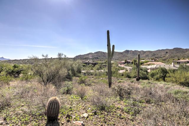 15420 N Cabrillo Drive, Fountain Hills, AZ 85268 (MLS #5841088) :: Group 46:10