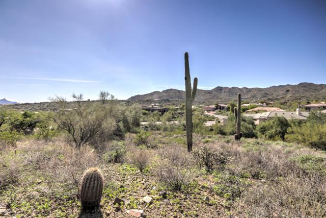 15420 N Cabrillo Drive, Fountain Hills, AZ 85268 (MLS #5841088) :: Kepple Real Estate Group