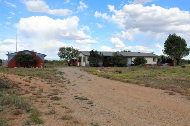 3584 N Mesquite Road, Cochise, AZ 85606 (MLS #5842489) :: Revelation Real Estate
