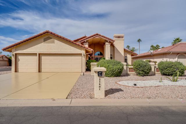 25801 S Eastlake Drive, Sun Lakes, AZ 85248 (MLS #5842765) :: Yost Realty Group at RE/MAX Casa Grande