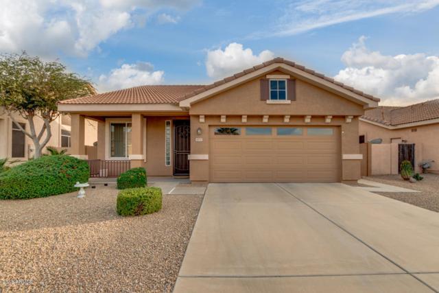 6931 W Blackhawk Drive, Glendale, AZ 85308 (MLS #5844003) :: Lifestyle Partners Team