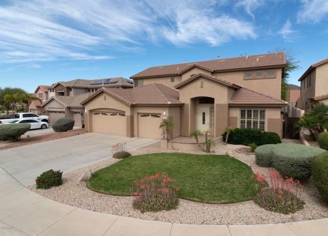 7040 W Lariat Lane, Peoria, AZ 85383 (MLS #5846316) :: The Results Group