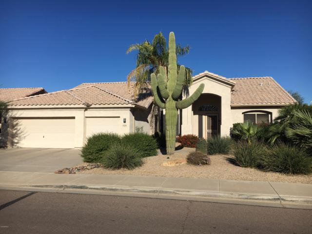 13608 W Roanoke Avenue, Goodyear, AZ 85395 (MLS #5847120) :: The AZ Performance Realty Team