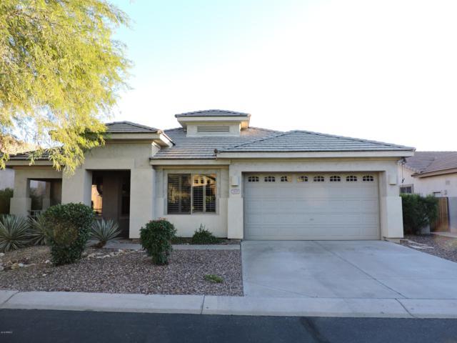 7415 E Nora Street, Mesa, AZ 85207 (MLS #5847395) :: Yost Realty Group at RE/MAX Casa Grande