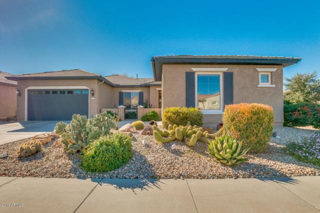 20792 N 270 Avenue, Buckeye, AZ 85396 (MLS #5850141) :: Desert Home Premier