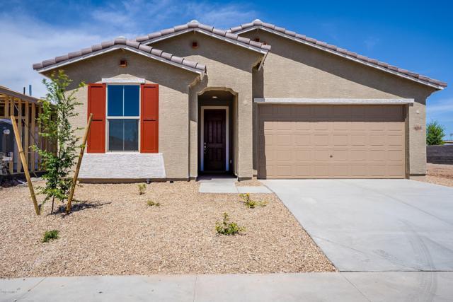 4034 W Coles Road, Laveen, AZ 85339 (MLS #5851064) :: Arizona 1 Real Estate Team