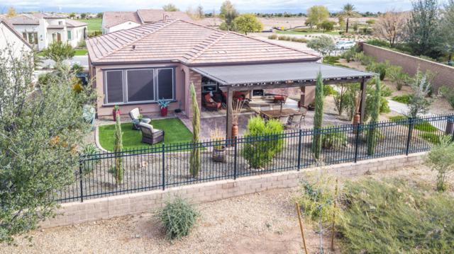 36818 N Stoneware Drive, San Tan Valley, AZ 85140 (MLS #5851809) :: The Daniel Montez Real Estate Group