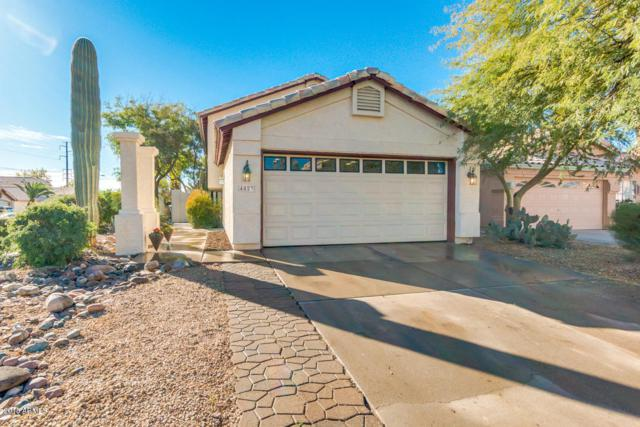 4023 E Hiddenview Drive, Phoenix, AZ 85048 (MLS #5852341) :: The W Group