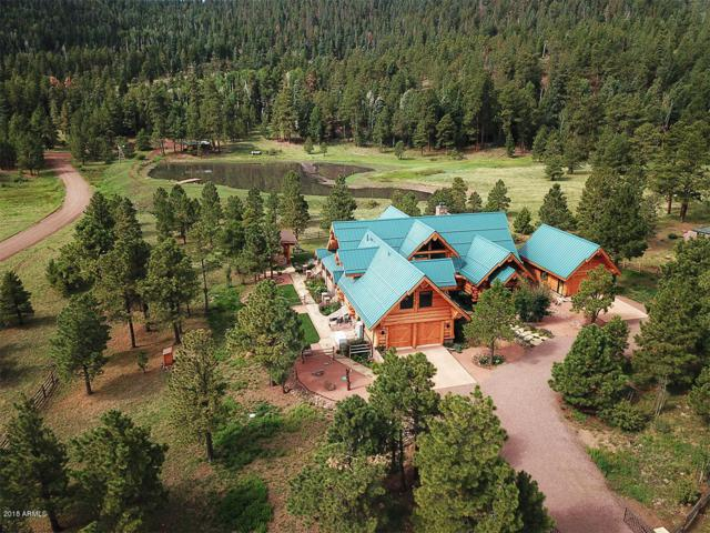 8 Apache County Rd N1332, Greer, AZ 85927 (MLS #5853702) :: Keller Williams Realty Phoenix