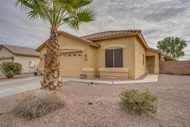 35625 N Belgian Blue Court, San Tan Valley, AZ 85143 (MLS #5854871) :: The W Group