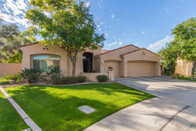 4600 S Verbenia Court, Chandler, AZ 85248 (MLS #5854897) :: Kortright Group - West USA Realty