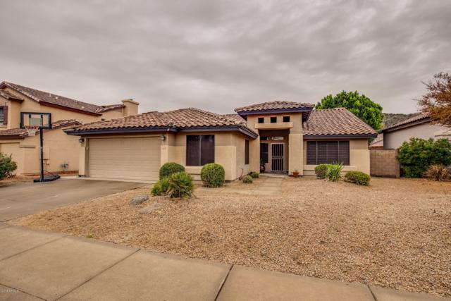 1630 E Runion Drive, Phoenix, AZ 85024 (MLS #5854920) :: The W Group