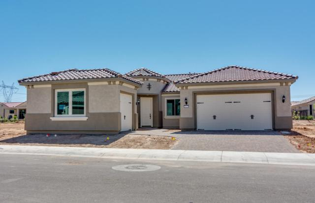 26655 W Covey Lane, Buckeye, AZ 85396 (MLS #5860609) :: The Results Group