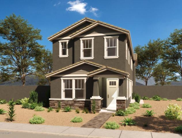 2020 W Trotter Trail, Phoenix, AZ 85085 (MLS #5866021) :: CC & Co. Real Estate Team