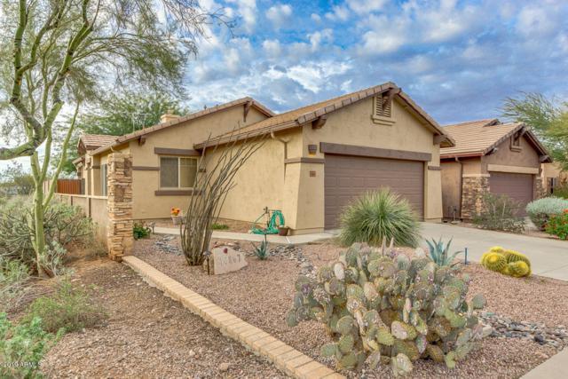 10867 E Secret Canyon Road, Gold Canyon, AZ 85118 (MLS #5869054) :: The Pete Dijkstra Team