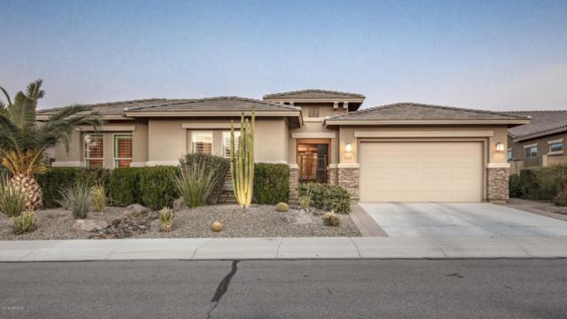 6709 S Lyon Drive, Gilbert, AZ 85298 (MLS #5869061) :: Revelation Real Estate