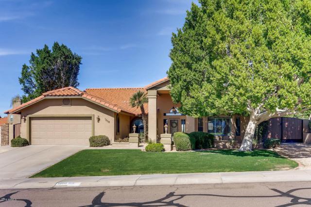 1208 E Seminole Drive, Phoenix, AZ 85022 (MLS #5869499) :: Yost Realty Group at RE/MAX Casa Grande