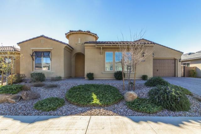 2205 E Tomahawk Drive, Gilbert, AZ 85298 (MLS #5872341) :: The W Group