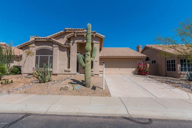 9166 E Maple Lane, Scottsdale, AZ 85255 (MLS #5876548) :: Occasio Realty