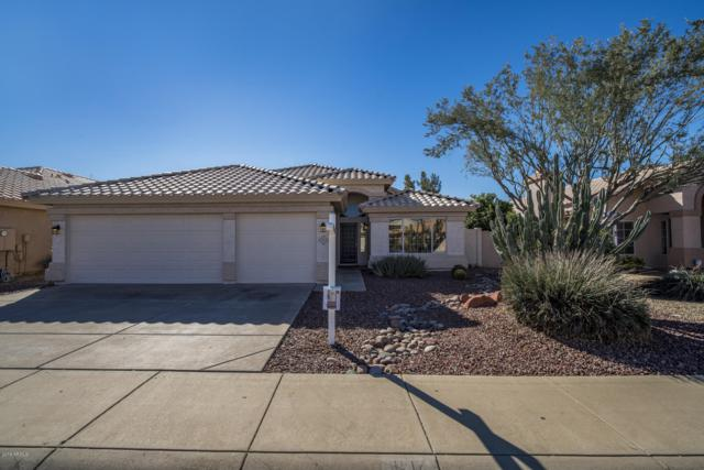 3517 E Kerry Lane, Phoenix, AZ 85050 (MLS #5877400) :: The Pete Dijkstra Team